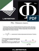 Info Phi Numero Aureo