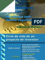 Administración de Proyectos Estudio de Mercado