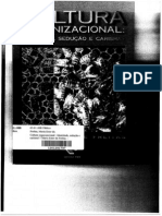 6 - FREITAS- Cultura Org e Narcisismo
