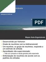 09.mapasauto-organizaveis