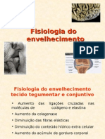 Fisiologia-Do-Envelhecimento.pdf