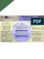 2009 AERA TICA Instrument Validation