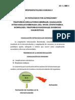 MFPH II - AO 04.pdf