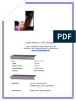 Hoja de Vida Luis Documento