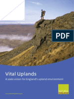Vital Uplands Vision