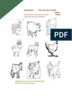Animale Domestice.doc Fisa Dlc