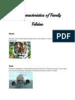 Animalfamiliescharacteristics-TommyJoseAndres