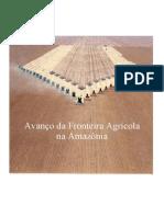 Expansão Agrícola na Amazonia.pdf