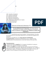 UAI Fisiología Libro Neurofisiología BIOELECTRICIDAD