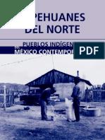 Tepehuanes Norte