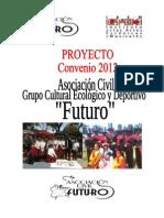 proyecto iaem 2012