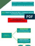 Etapas-Desarrollo Motor y Pedagogia Aplicada a La Iniciacion Deportiva (1)