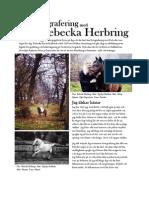 Hästfotografering med Rebecka Herbring