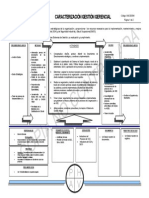 Ggcs01-Caracterizacion Gestion Gerencial