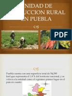 Unidad de Produccion Rural en Puebla