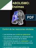 4enzimas+Metabolismo+Nm+121021