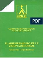 el adiestramiento de la vision subnormal.doc