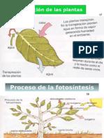 Imagenes de procesos Fisico-quimicos