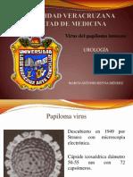Urologia Virus de Papikoma Humano