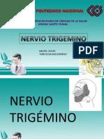 Trigemino Expo
