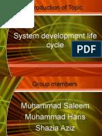 21894887 System Development Life Cycle Presentation