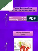 Tugas Neuroanatomi Nervus XI (Asesorius), Nervus XII (Hipoglosus) dan Sistem Motorik MAR