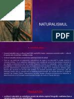 Naturalism Ul