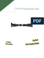 proiect vinete