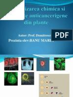 cancerizareachimicasisubstanteanticancerigenedinplante