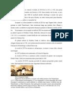 sighisoara-clima fauna relief obiective