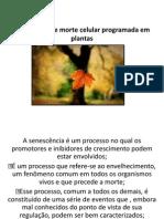 Senescência e morte celular programada em plantas