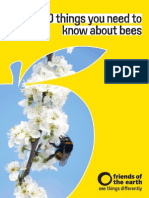 Bees Booklet