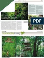 Tree House Comunity
