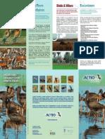 Folleto Actio Birding-esp (4)