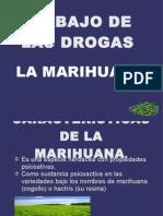 Trabajo de Las Drogas.