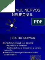 Neuronul