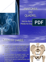 Anatomia+Do+Quadril (1)