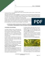 Archeologia.pdf