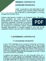 7 MA 7 Guvernanta Corporativa