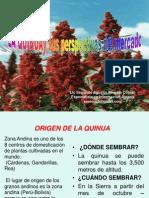 LA QUINUAy Sus Perspectivas Del Mercado_2013