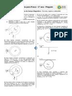 Fontes Campo Magnetico-pinguim (1)
