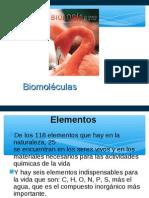 biomoleculas 2013