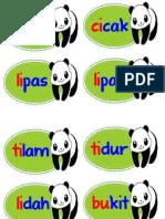 Anak Panda Kv Kvk