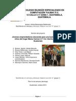 Proyecto de Accion- 2013