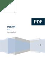 Le DSLAM Digital Subscriber line Access Multiplexer est un appareil utilisé par les fournisseurs d-1(1).docx