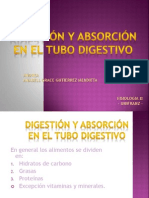 Digestion y Absorcion Del Tubo Digestivo