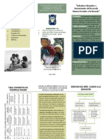 Indicadores en El Desarrollo Humano-triptico Psicologia
