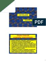 Cataliza - Curs 4