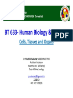 BT 633 Lecture-4 Cells and Tissues