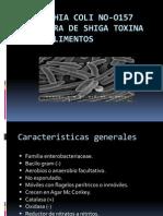 Escherichia Coli No-O157 Productora de Shiga Toxina En